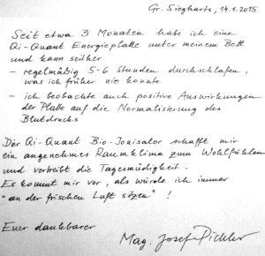 Reg-Ion-Erfahrung-Mag-Pichler