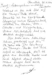 Steinbacher2